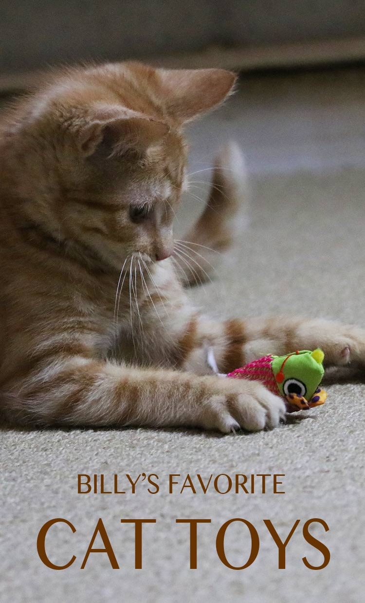 billys-favorite-toys