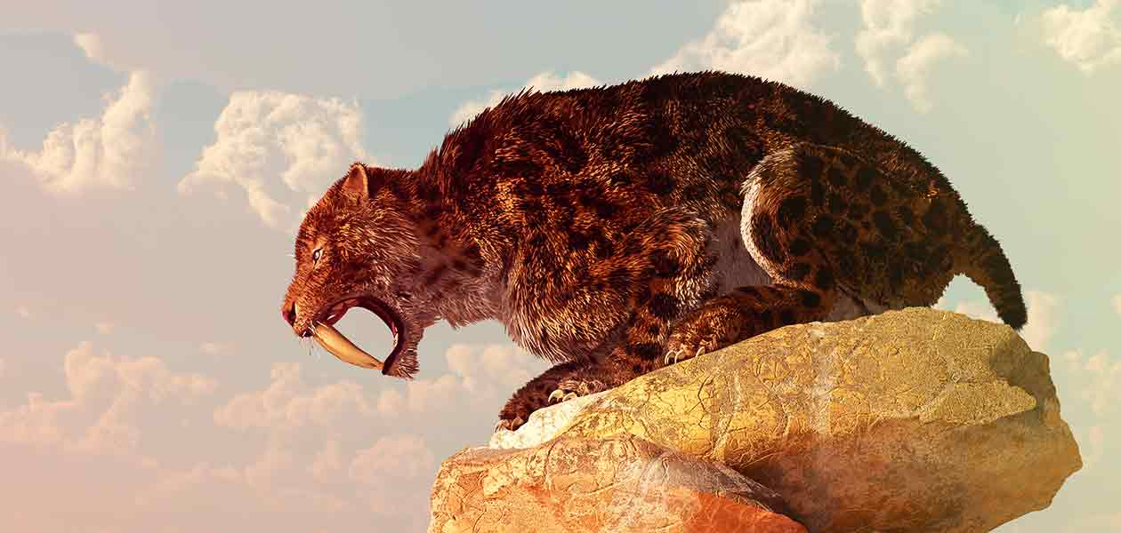 extinct cats