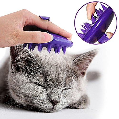 How to give a cat a bath with the best cat brushes