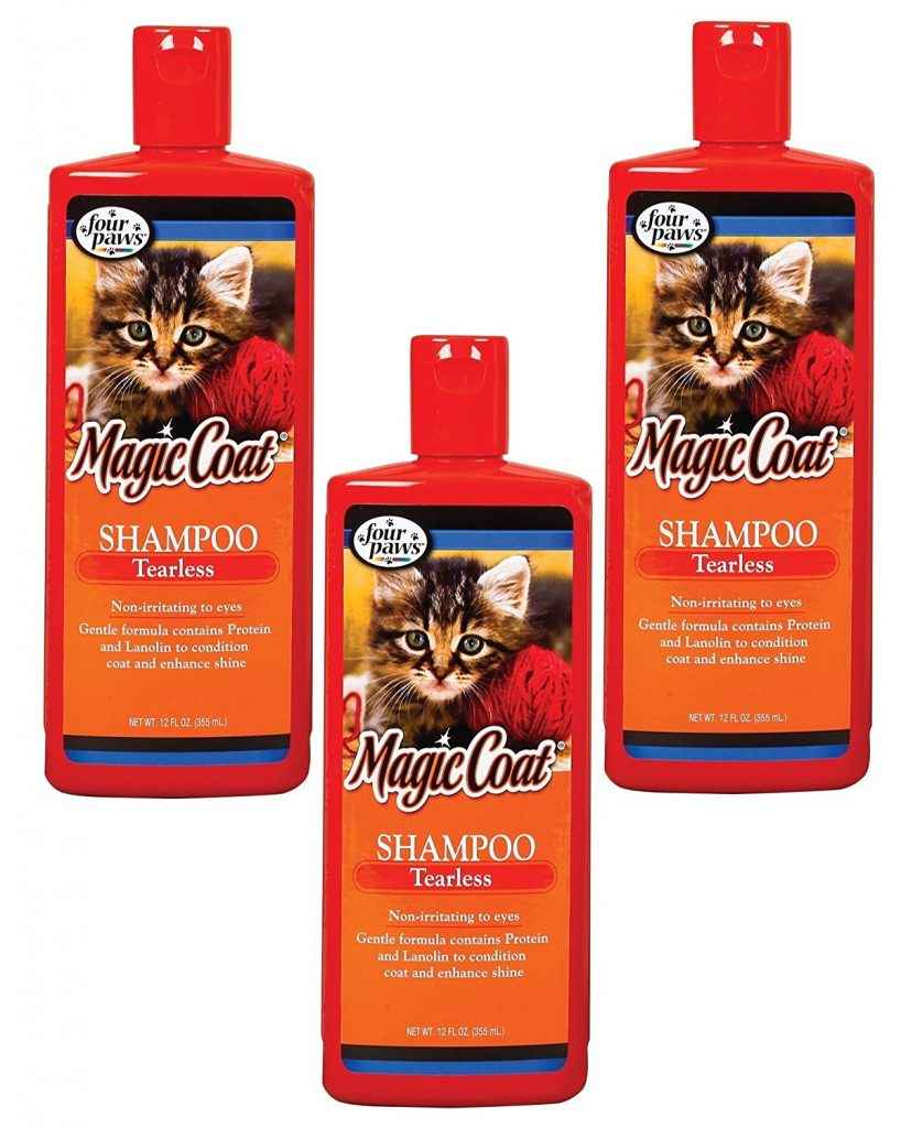 kitten shampoo - how to give a cat a bath