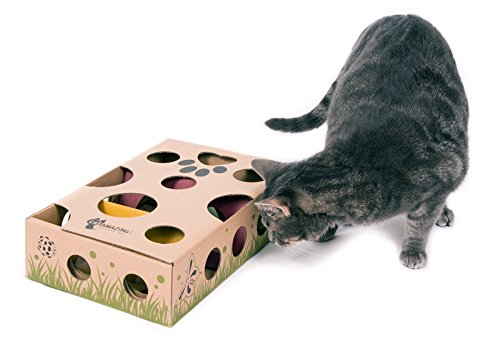 cat toy for indoor cats