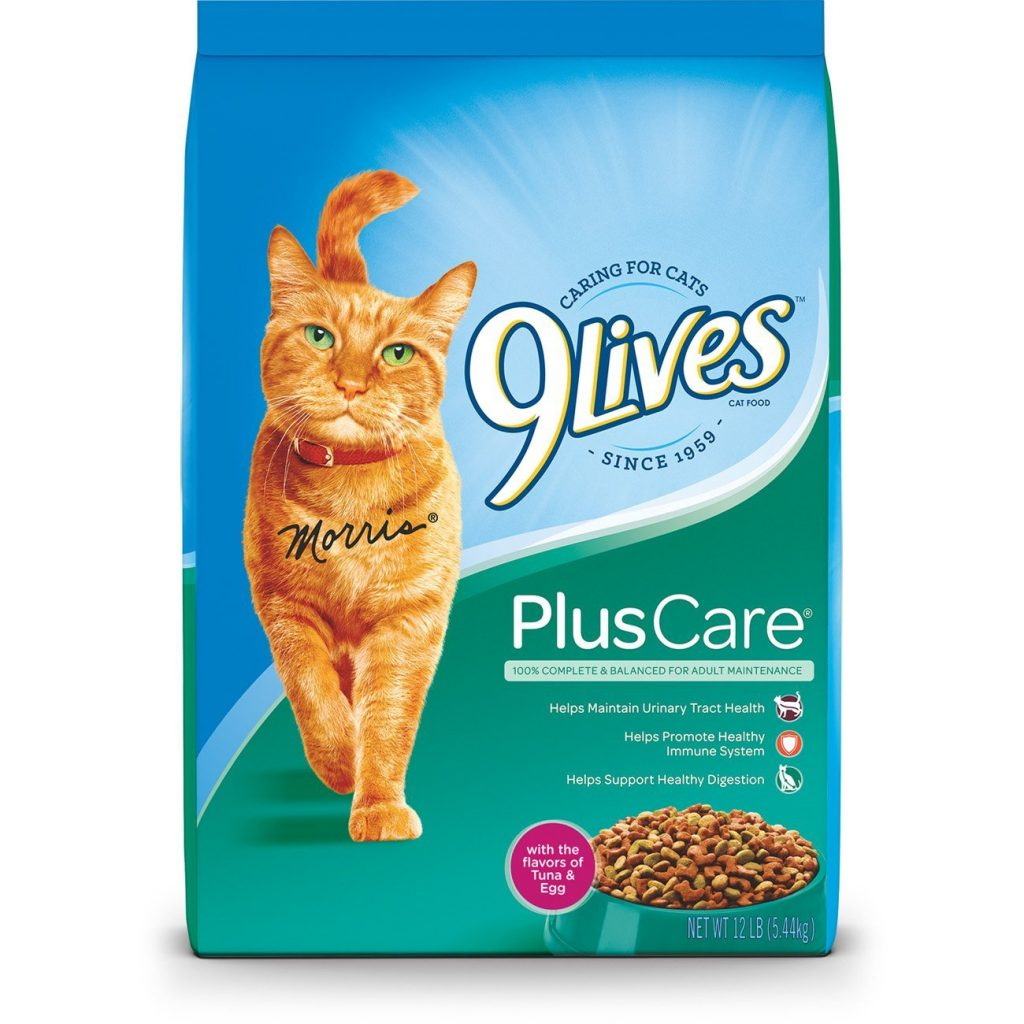 A plete Guide To The Best Cheap Cat Food Wet and Dry