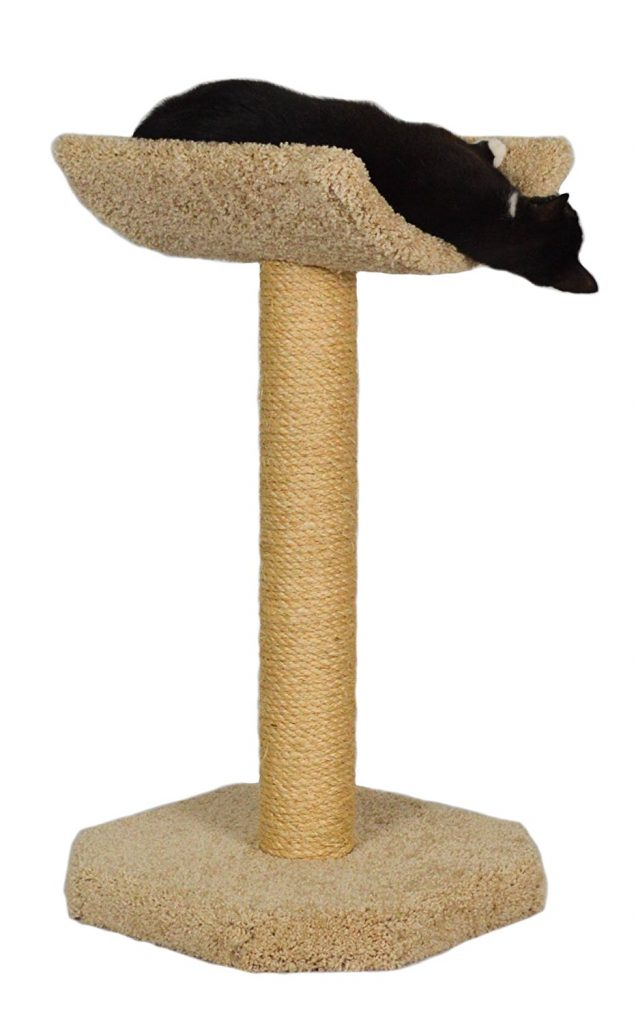 Cat Perches For Large Cats