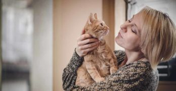 Does My Cat Love Me? A Guide to the Signs of Cat Love