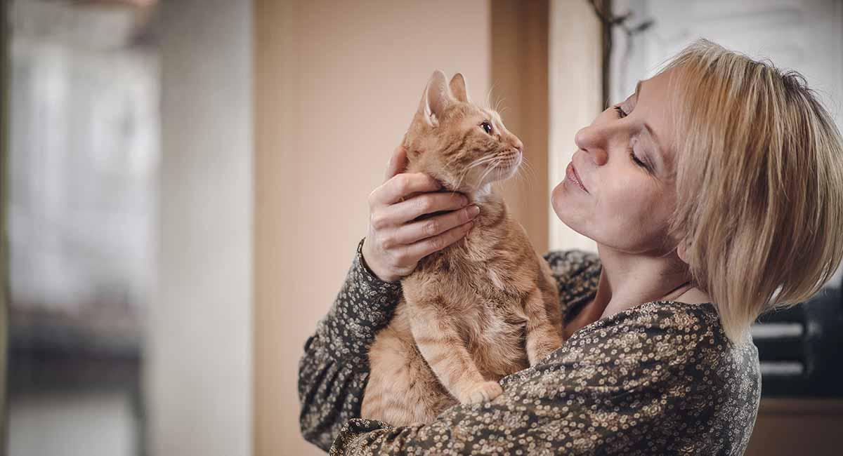 Cat cuddling woman