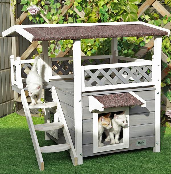 best cat condo tower