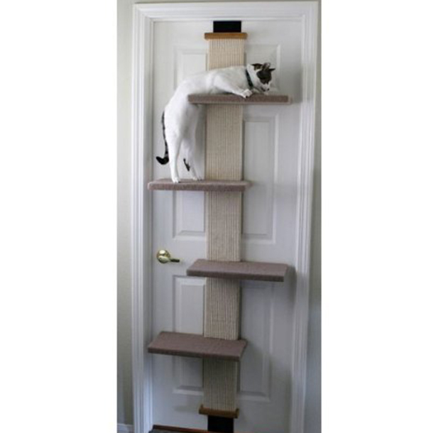 best cats tower