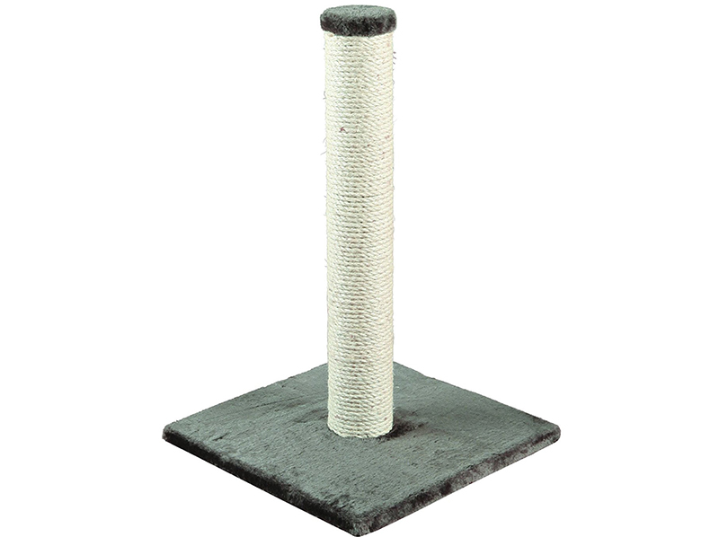 grey cat scratching post