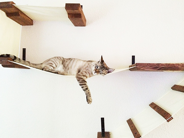 cat hammock best cat hammocks for cute kitties   reviews and tips for choosing  rh   thehappycatsite