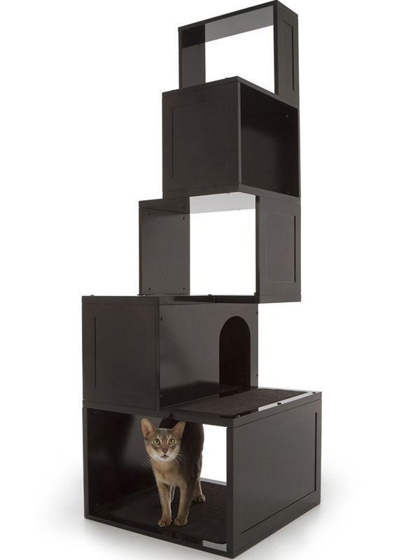 Best Designer Cat Furniture For Stylish Kitties Their