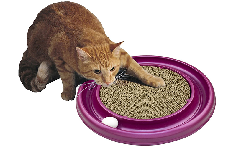 best cat scratching toy
