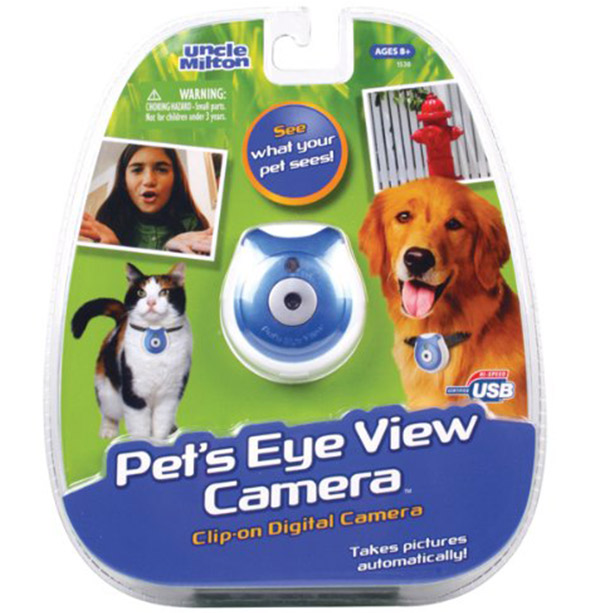 Best Cat Camera