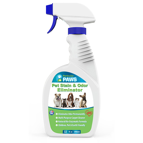 Best Carpet Shampoo Cat Urine Nrtradiant
