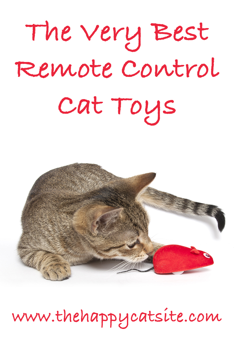 Types of Remote Control Toys