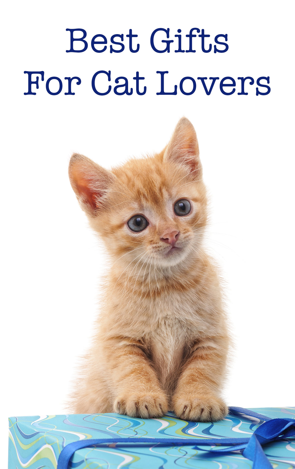Best gifts for cat lovers 2017 cute cats for Best website for gifts