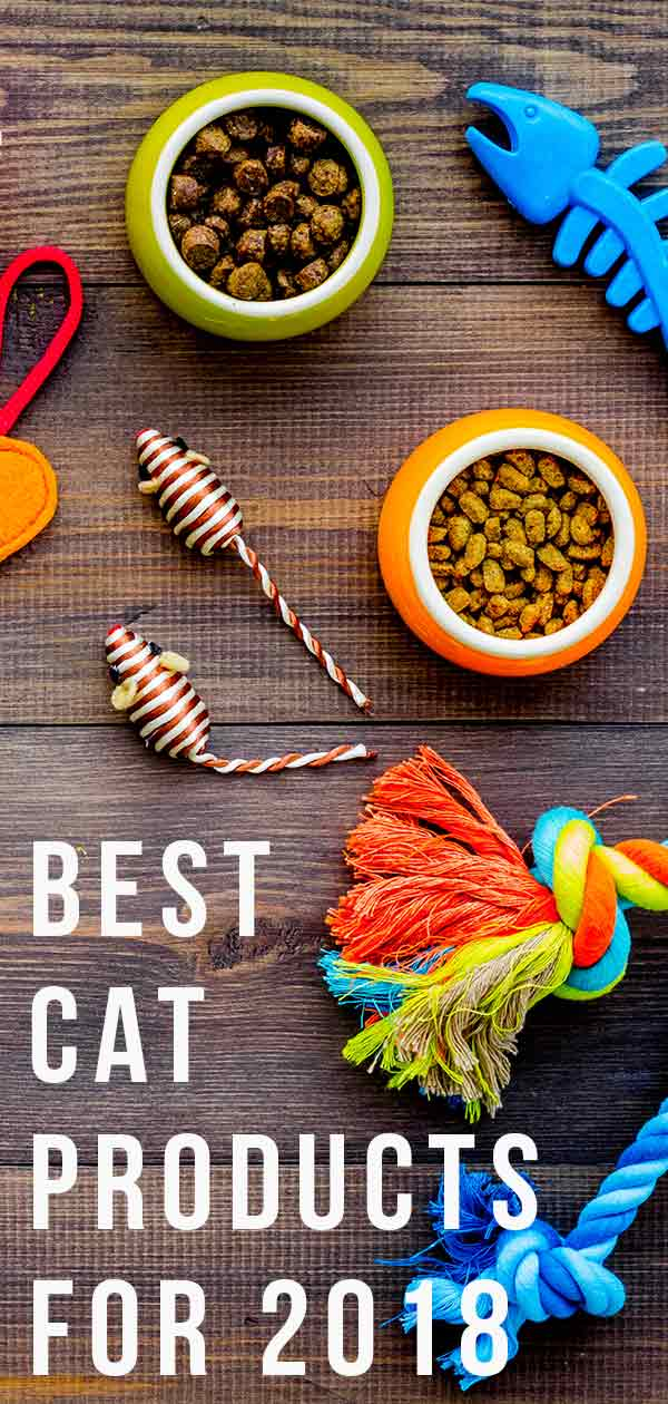 best cat products for 2019
