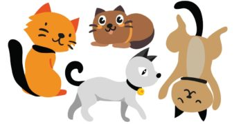 cartoon cat names