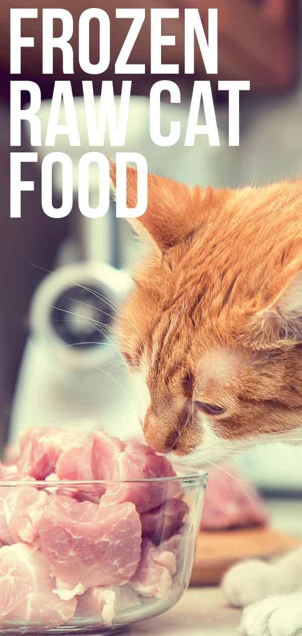 frozen raw cat food