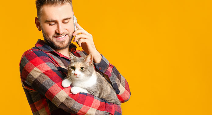 what do to with a needy cat